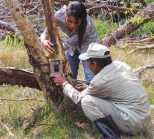 Ret and Ranger place a camera-trap for the 2015 CBC Fishing Cat Survey | Photo credit: Vanessa Herranz Muñoz